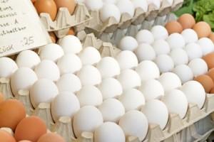 Eier der optimale Eiweisslieferant ?
