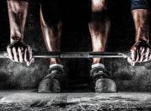 Kraftwerk Muskel – Fettabbau dank Muskelmasse